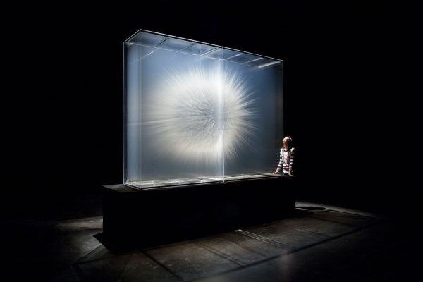 Vision by David Spriggs 2010 104 x 124 x 36 inches / 264 x 315 x 91 cm Acrylic paint on multiple sheets of transparent film in display case