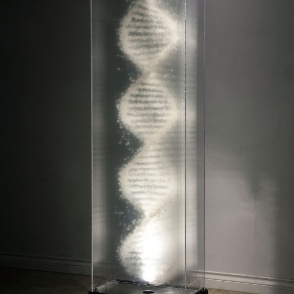 Title: Origins,Artist: David Spriggs,Location: Collection Pierre Miron, Montrea,lDate: 2018,Size: Each artwork 53 x 186 x 28 cm / 21 x 73 x 11 inches,Materials: Painted layered transparencies in display case